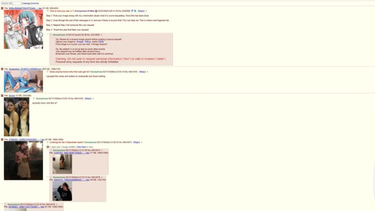 4Chan Adult Requests