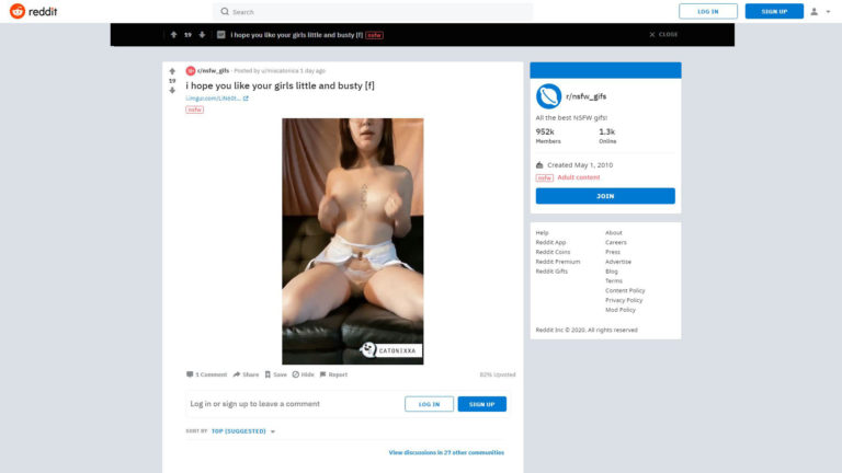 NSFW_GIFS -I hope you like your girls little and busty