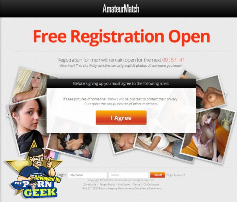 Are adult websites profitable