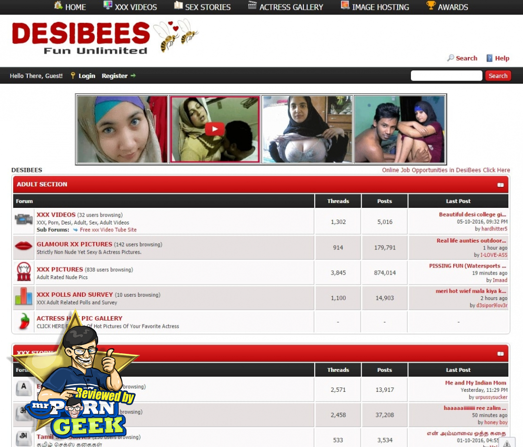 DesiBees: What DesiBees com Brings To The Indian Porn Table