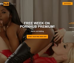 Free ebony porn sites