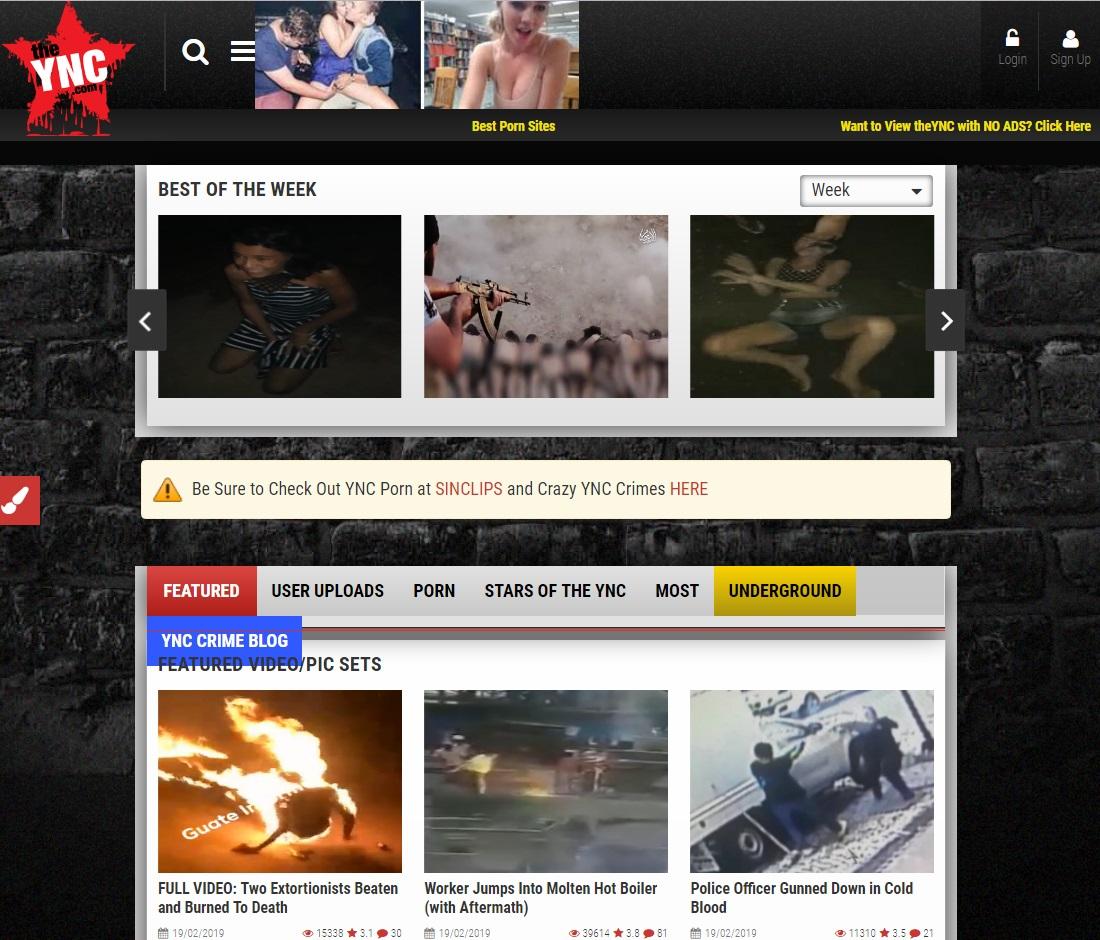 Extreme Porn Sites - TheYNC